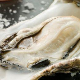 Fresh-oyster-940x488